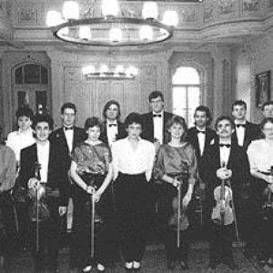 Image for 'Hungarian Virtuosi Chamber Orchestra, Claudi Arimany & Josep-Francesc Palou'