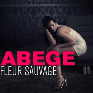 Image for 'Fleur sauvage (feat. Shana, Thayna) [Embrasse moi doudou]'