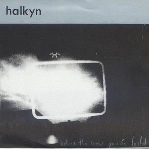 Image for 'Halkyn'