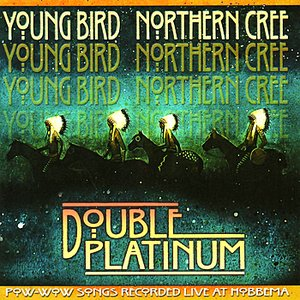 Image for 'Double Platinum'