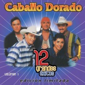 Image for '12 Grandes exitos Vol. 1'