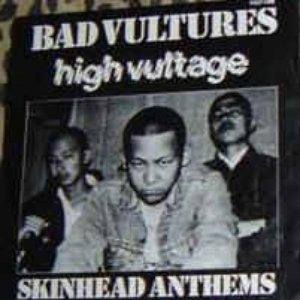 Image for 'Bad Vultures'