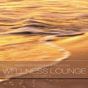 """Wellness Lounge, Vol. 5""的图片"