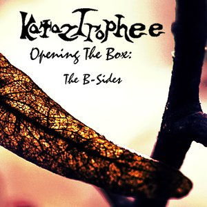 Immagine per 'Opening The Box: The B-Sides'