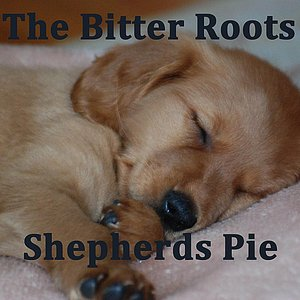 Image for 'Shepherds Pie'