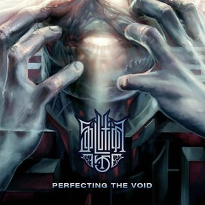 Image for 'Perfecting the Void'
