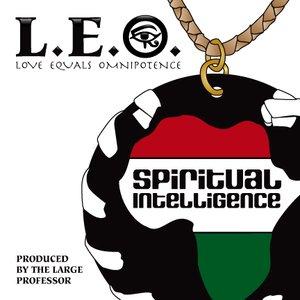 Image pour 'Spiritual Intelligence'