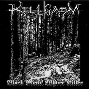 Image for 'Black Metal Whore Killer'