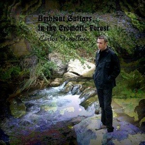 Image for 'Ambient Guitars in the Cromatic Forest'