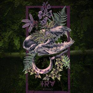 Image for 'Botanica'