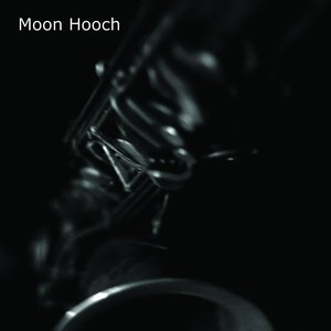 Immagine per 'The Moon Hooch Album'