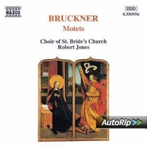 Image for 'St. Bride's Church Choir, Fleet Street'