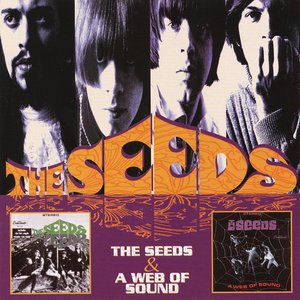 Image for 'The Seeds & A Web Of Sound'