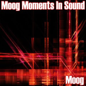 Image for 'Moog Moments In Sound'