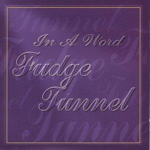 Immagine per 'In a Word'