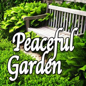 Peaceful Garden (Nature Sounds)