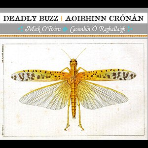 Image for 'Ar Phósaís Fós?, The Surround, We'll Hunt the Wren, The New Way to Miltown'