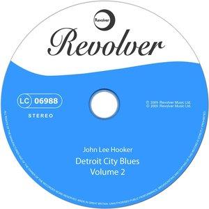 Image for 'Detroit City Blues Volume 2'