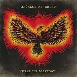 Image for 'Shake The Breakdown'