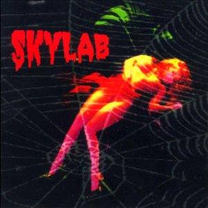 Image for 'Skylab'