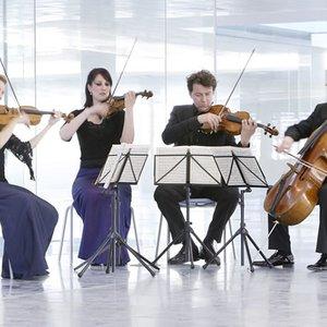 Image for 'The Brodsky Quartet'