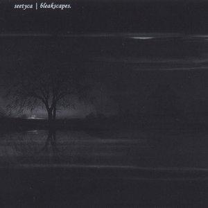 Image for 'Bleakscapes'