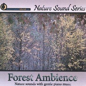 Image for 'Forest Ambience (with relaxing music)'