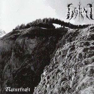 Image for 'Naturkraft'
