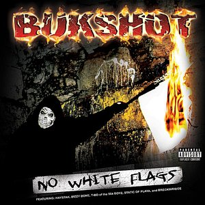 Image for 'No White Flags'