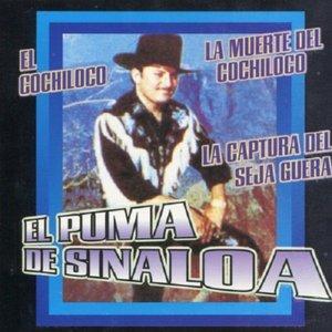 Image for 'El Puma de Sinaloa'