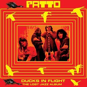 Image for 'Ducks In Flight'