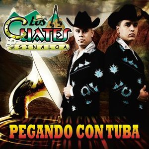 Image for 'Pegando Con Tuba'