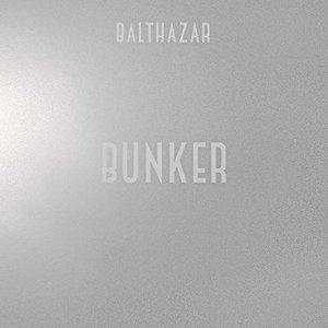 Immagine per 'Bunker (Vuurwerk Endless Summer Remix)'