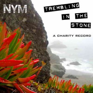 Immagine per 'Trembling in the Stone - A Charity Record'