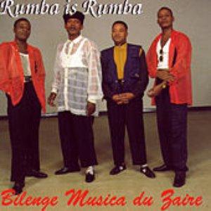 Image for 'Bilenge Musica Du Zaire'