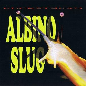 Image for 'Albino Slug'
