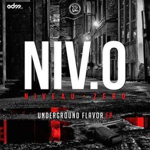 Image for 'Underground Flavor EP'