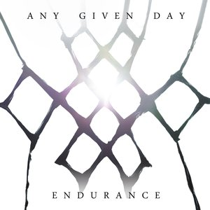 Image for 'Endurance'