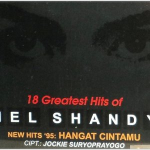 Image for '18 Greatest Hits Of Mel Shandy'