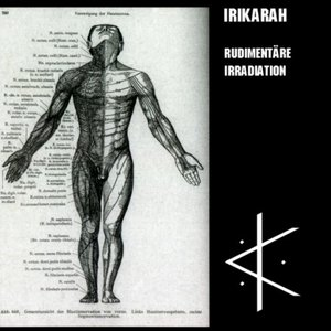 Image for 'Rudimentäre Irradiation'