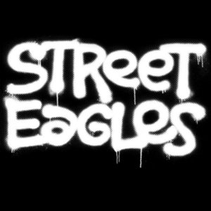 Image for 'Street Eagles'