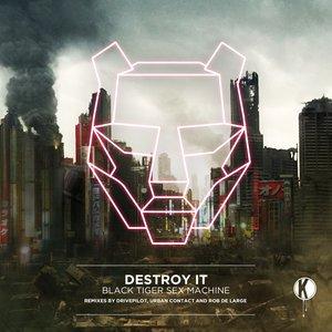 Image for 'Destroy It'