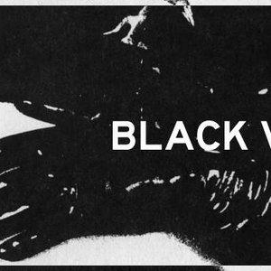 Image for 'Black Vase'