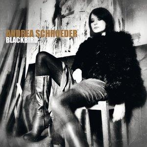 Image for 'Blackbird'
