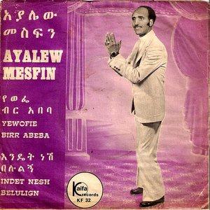 Bild för 'Ayalew Mesfin'