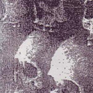 Image for 'Irgun Z'wai Leumi'
