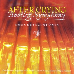 Image for 'Bootleg Symphony'