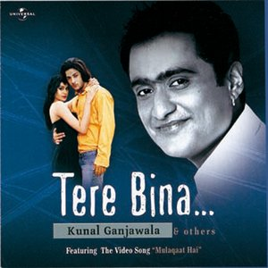 Image for 'Tere Bina....'