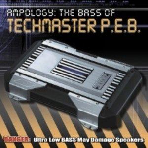 Image for 'Techmaster P.E.B.'