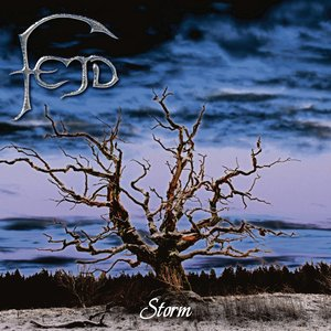 Image for 'Fejd - Storm'